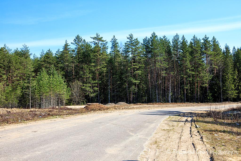 фото российских дорог