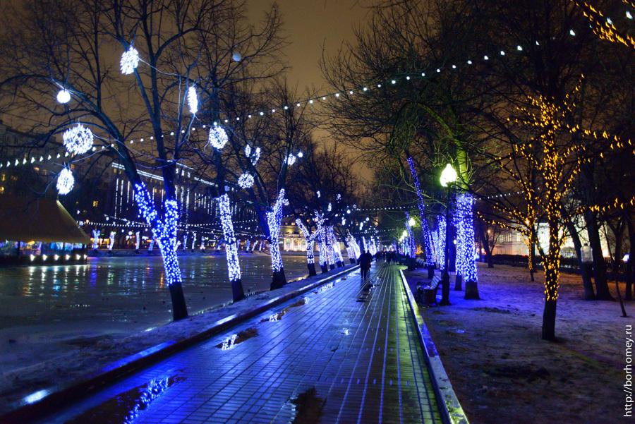 подсвеченные деревья на чистопрудном бульваре