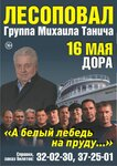 ЛЕСОПОВАЛ_А3_УССУРИЙСК.jpg
