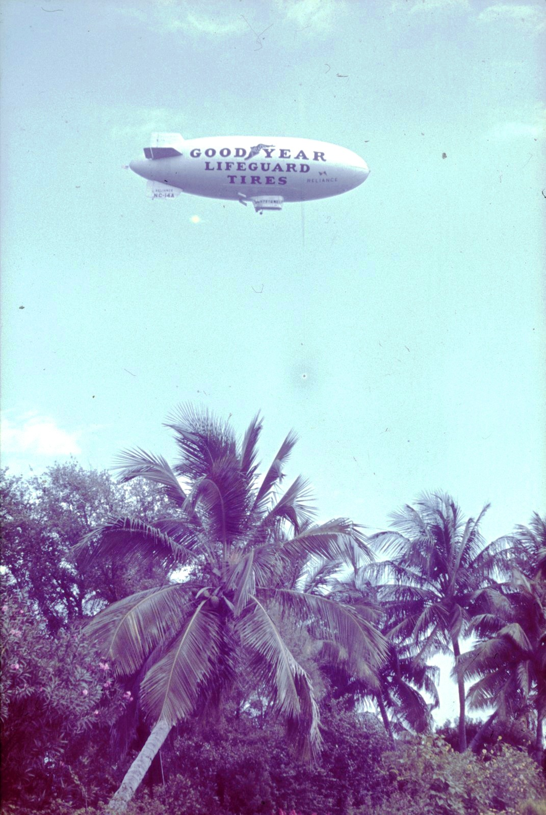 Майами..Дирижабль над пальмами