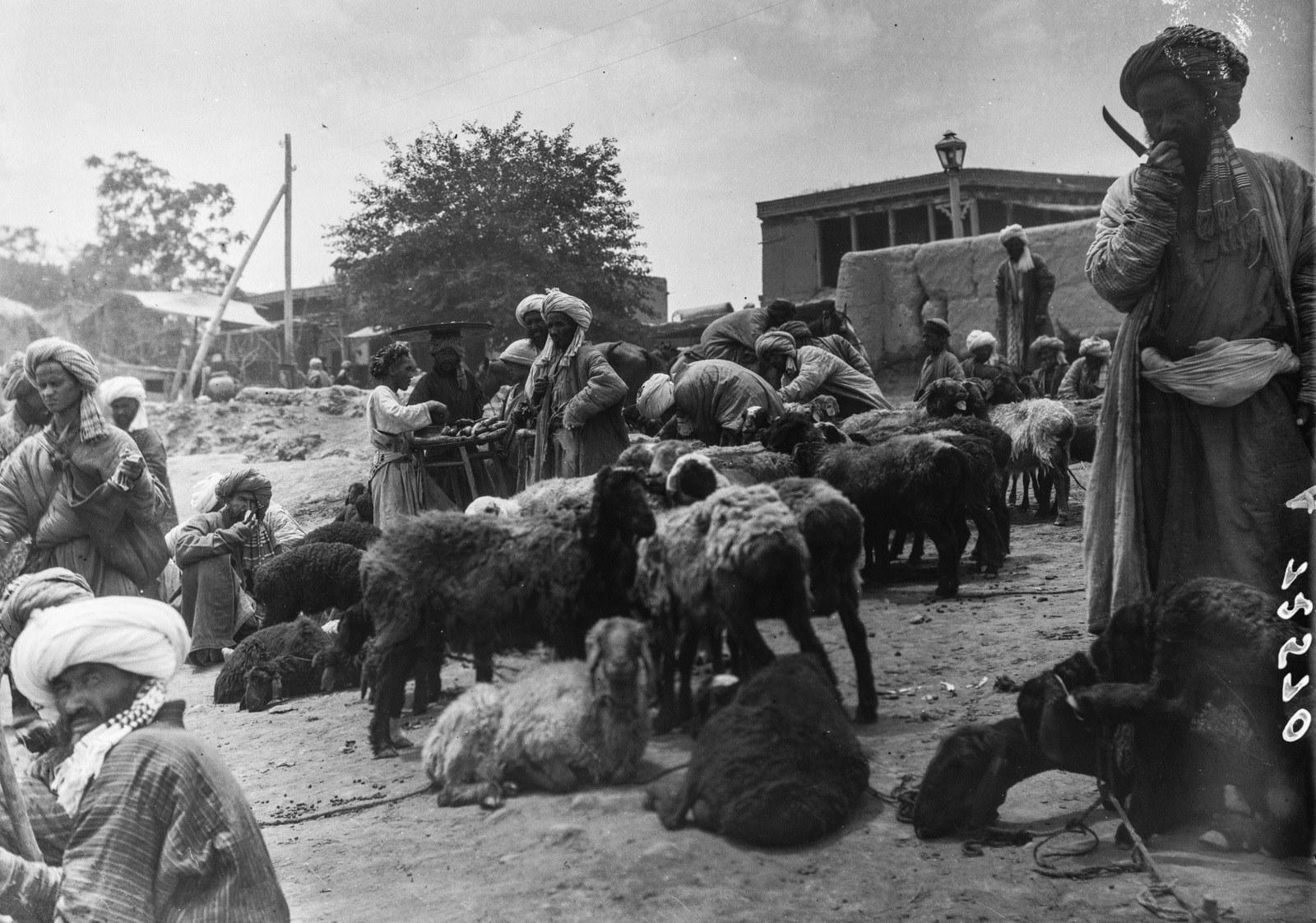 Скотный базар