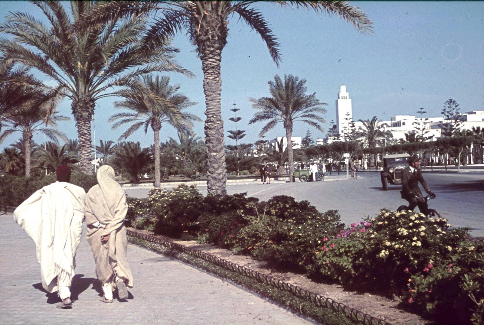 Триполи. Общественный парк