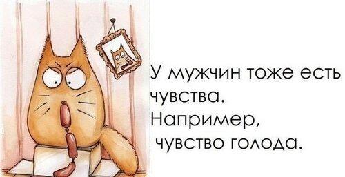 140798923_4809770_u0myjik_1_.jpg