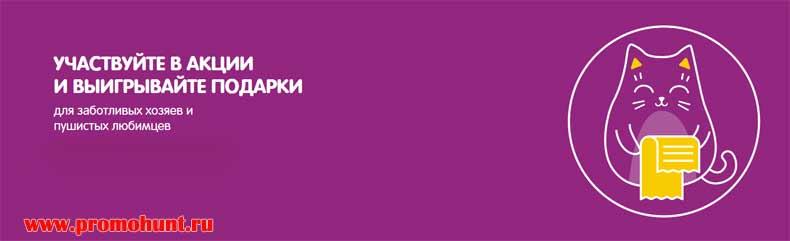 Акция День кошек  2018 на catday.ru