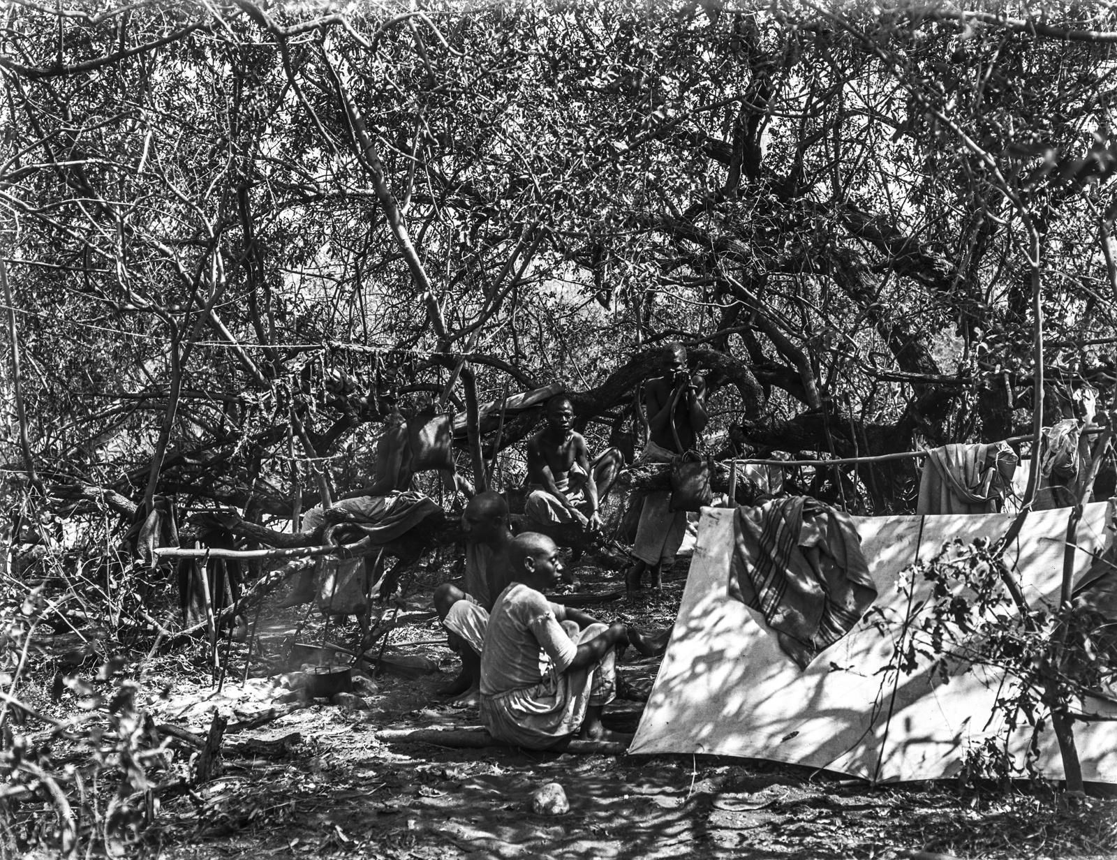 245. Группа африканцев возле палатки