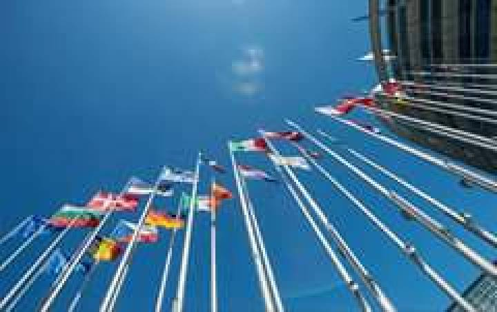 Польша, Чехия, Литва, Ирландия и ряд других европейских государств приняли