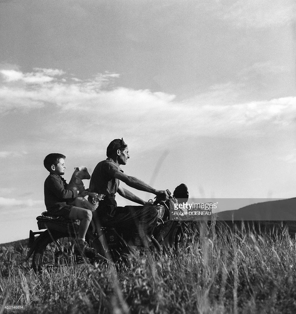1958. Ребенок на мотоцикле пастуха во время сезонного перегона на летние пастбища возле Вальберга 25 июня