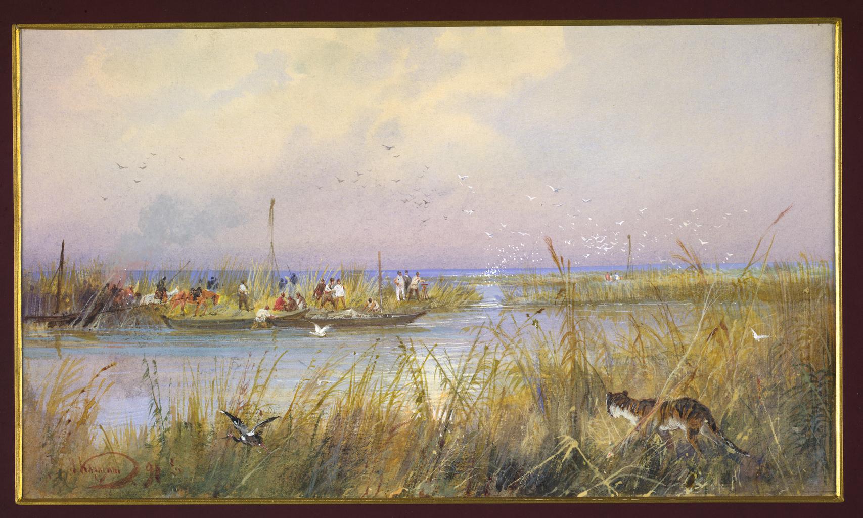 13. Исследование прибрежных водно-болотных угодий