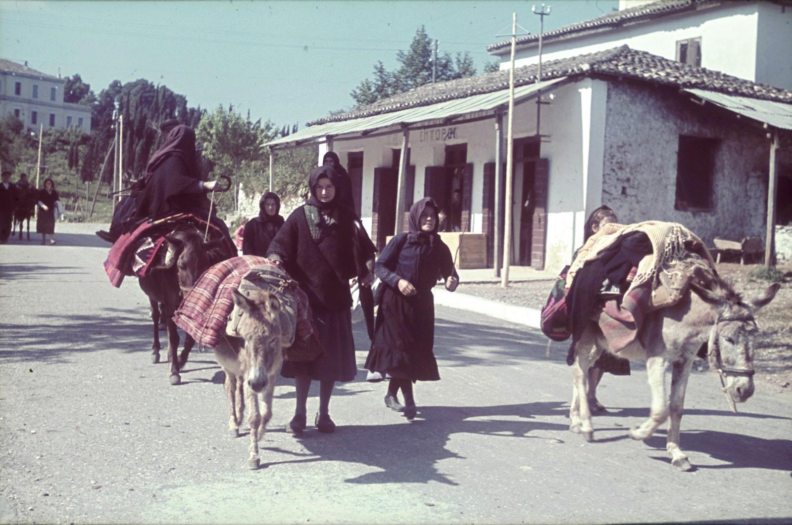 Женщины с ослами в деревне