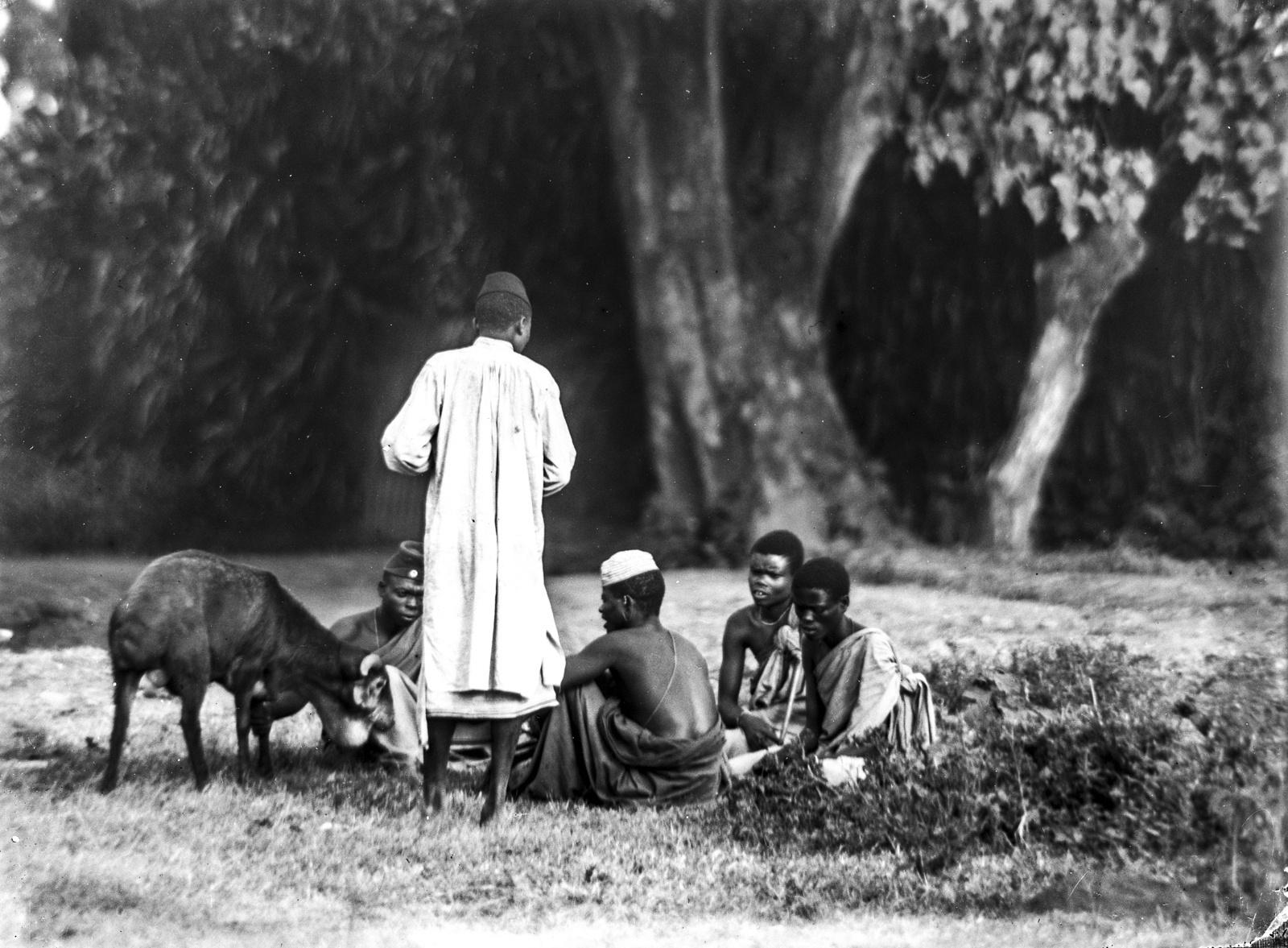 224. Группа африканцев, сидящих  рядом с животным