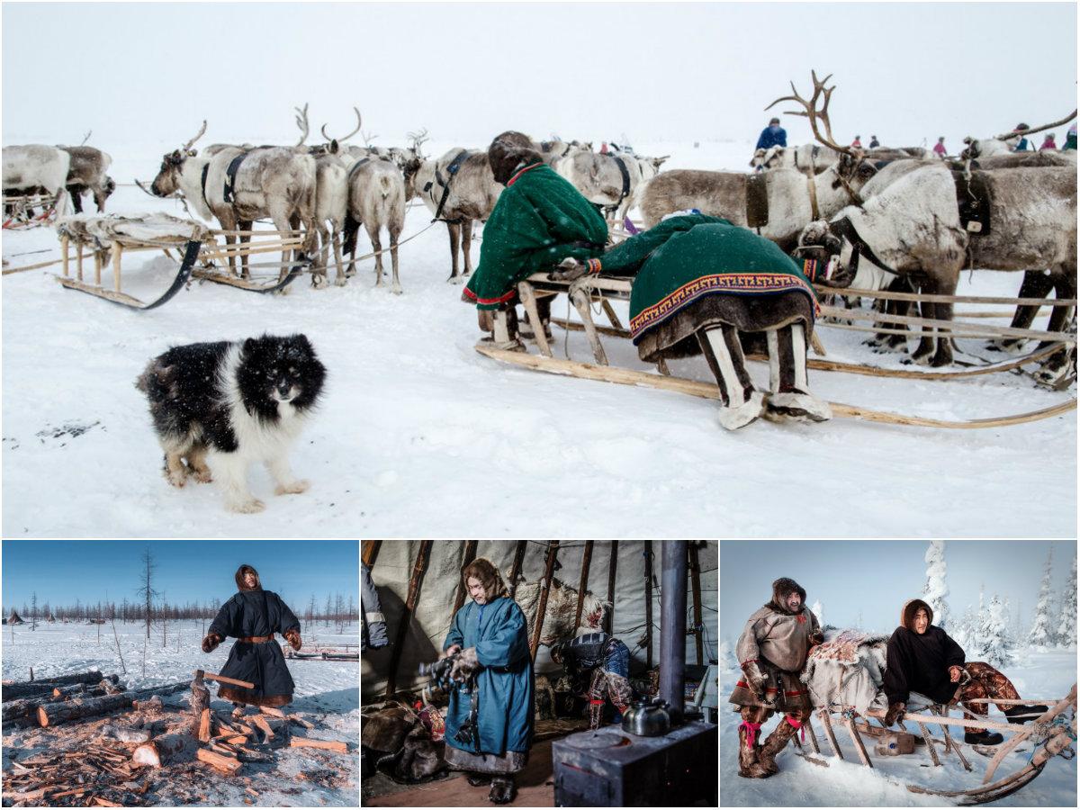 Жизнь сибирских ненцев в фоторепортаже Камиля Нуреева