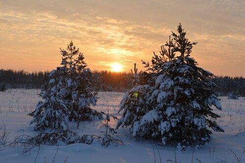 В зимнем закате...