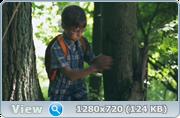 http//img-fotki.yandex.ru/get/1028622/217340073.9/0_2089b8_b72279ee_orig.png