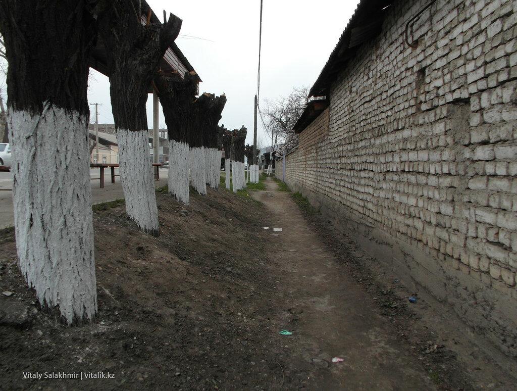 Стена из кирпича Ош
