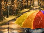 Under the rain.jpg