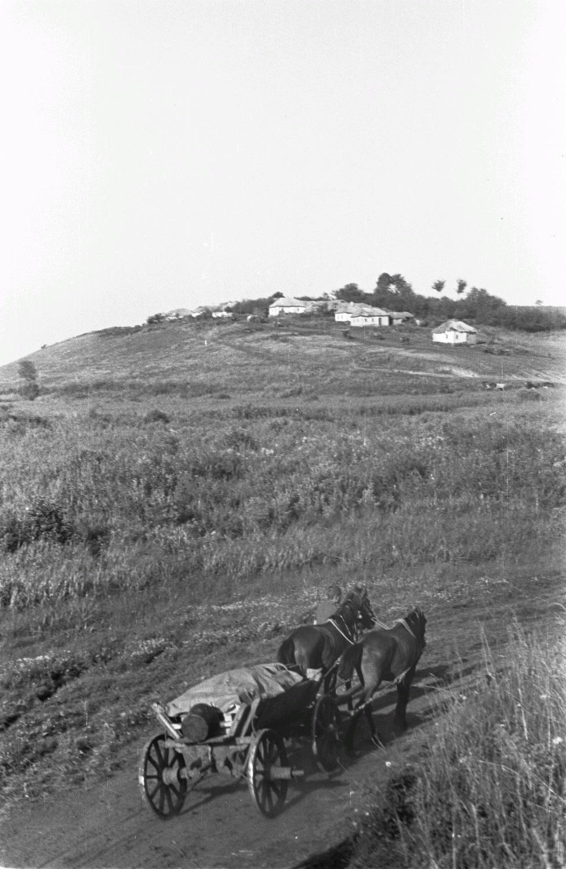Конный экипаж на грунтовой дороге. На заднем плане деревня