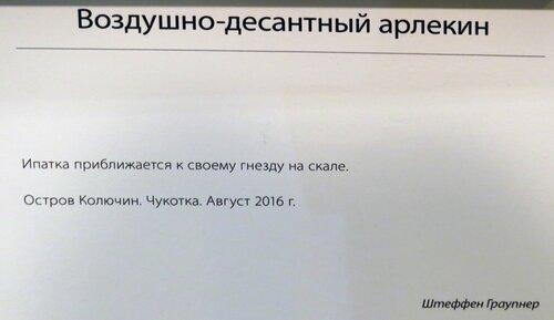 https://img-fotki.yandex.ru/get/1029133/140132613.6d5/0_24485d_74f352ad_L.jpg