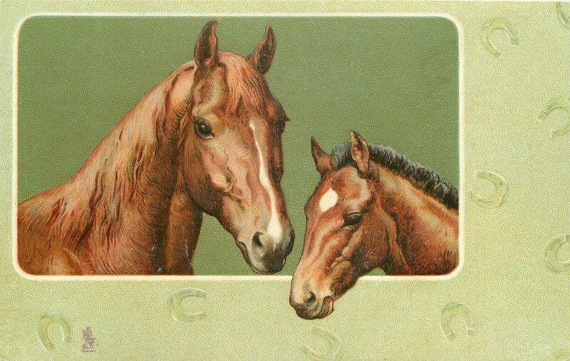Лошади на старинных открытках, днем