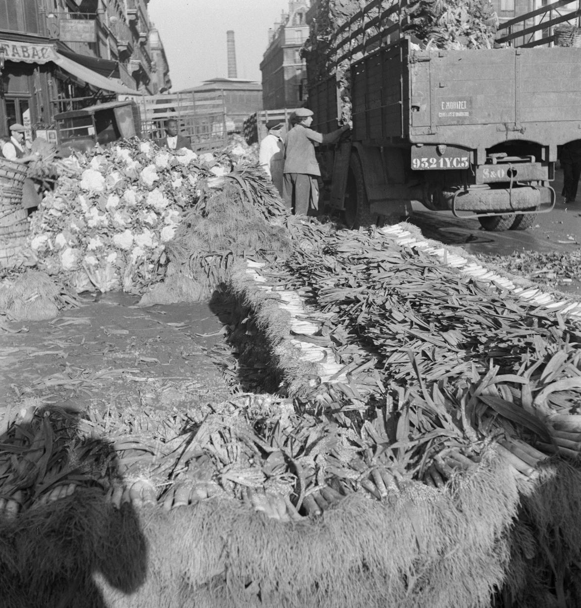18. Выставка цветной капусты