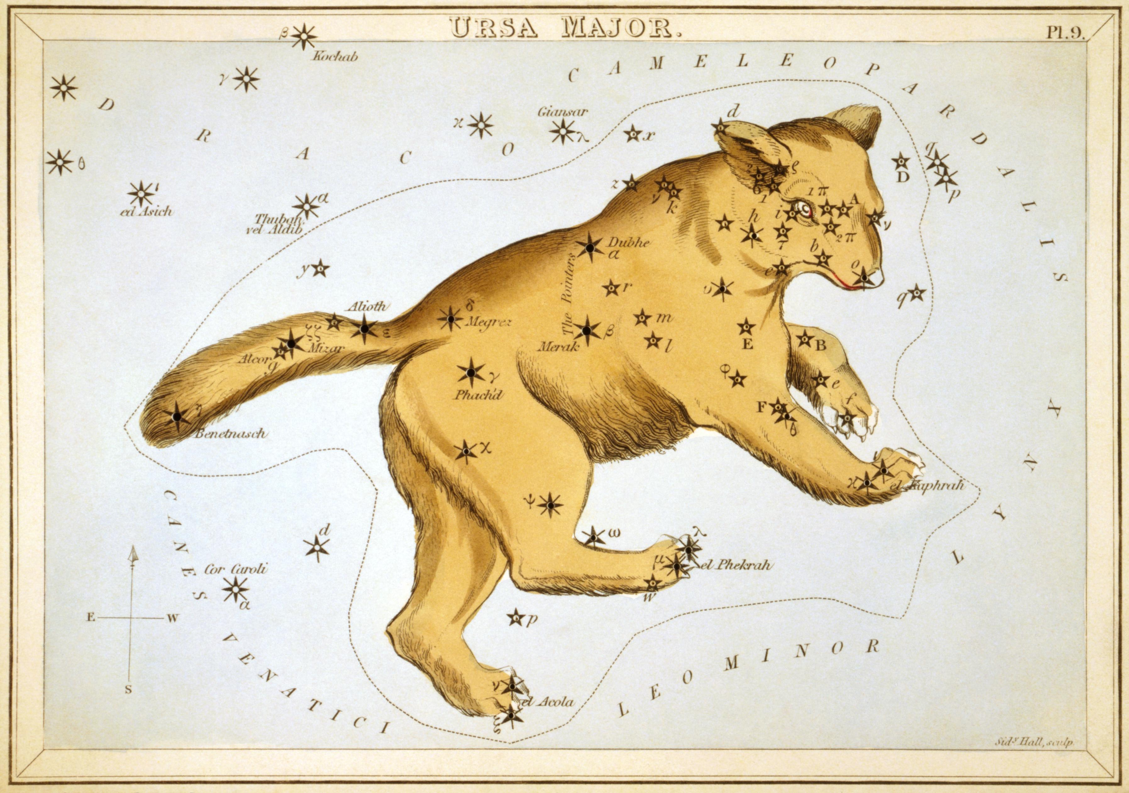 Карточка №9: Большая Медведица