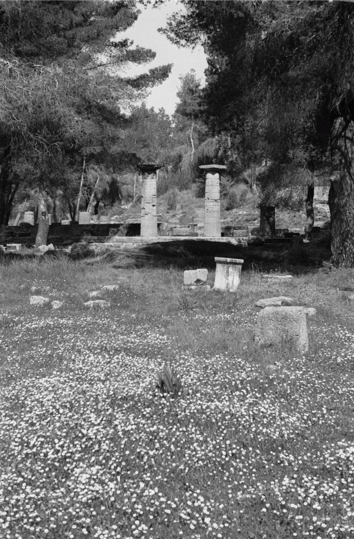 Олимпия. Руин храма Гера