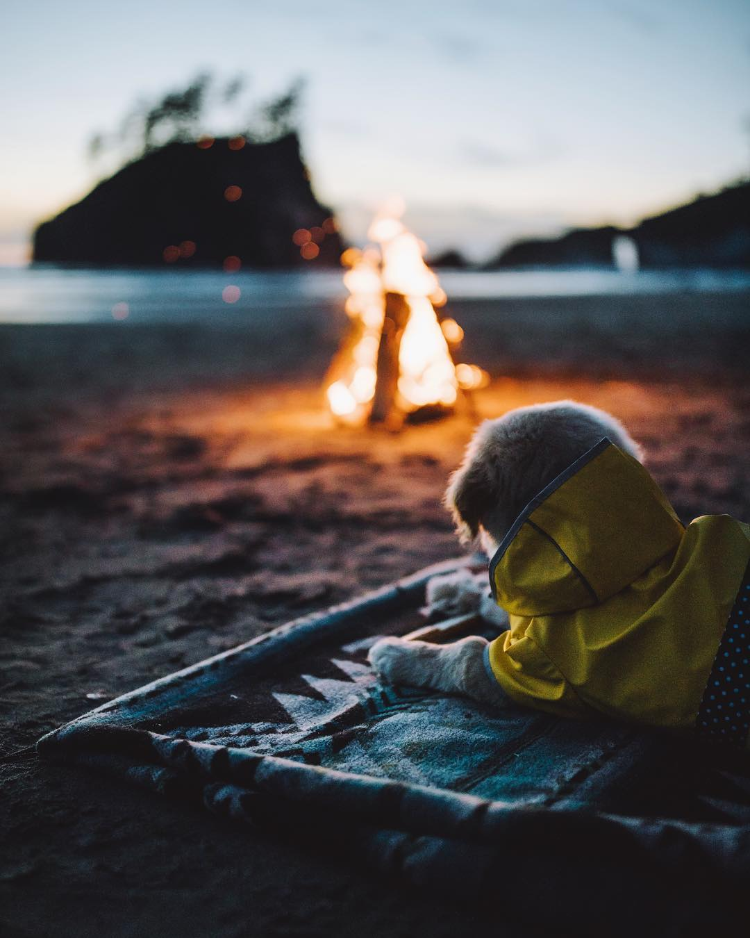 Путешествия и приключения на снимках Кэмерона Андерсона