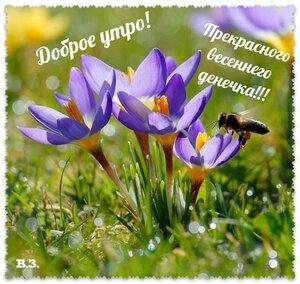 https://img-fotki.yandex.ru/get/1030038/131884990.103/0_16d0c0_a0a28bc9_M.jpg