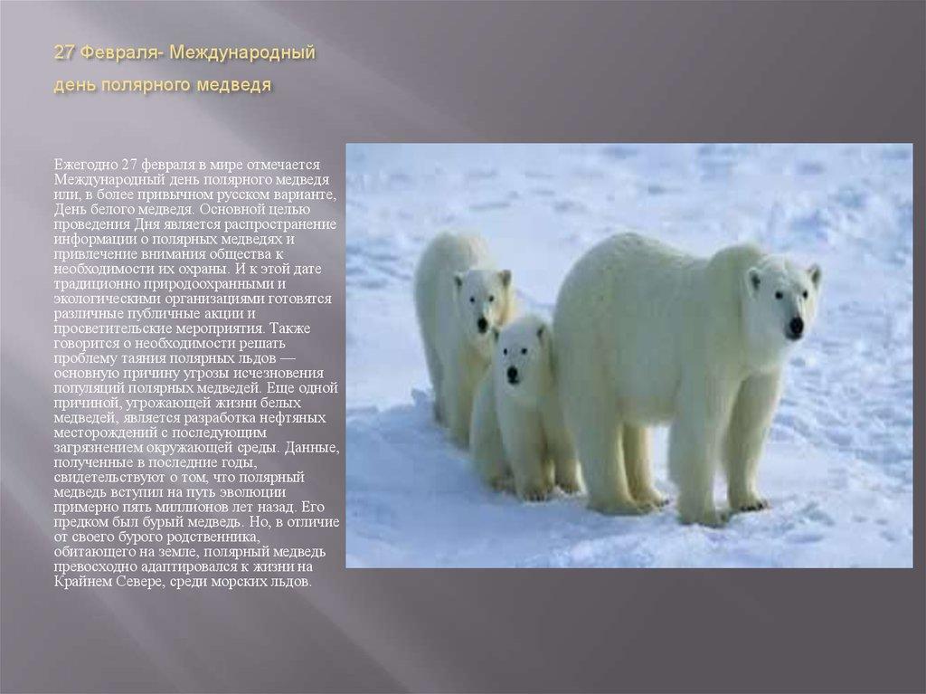 27 февраля Международный день полярного медведя. Красивая семья открытки фото рисунки картинки поздравления