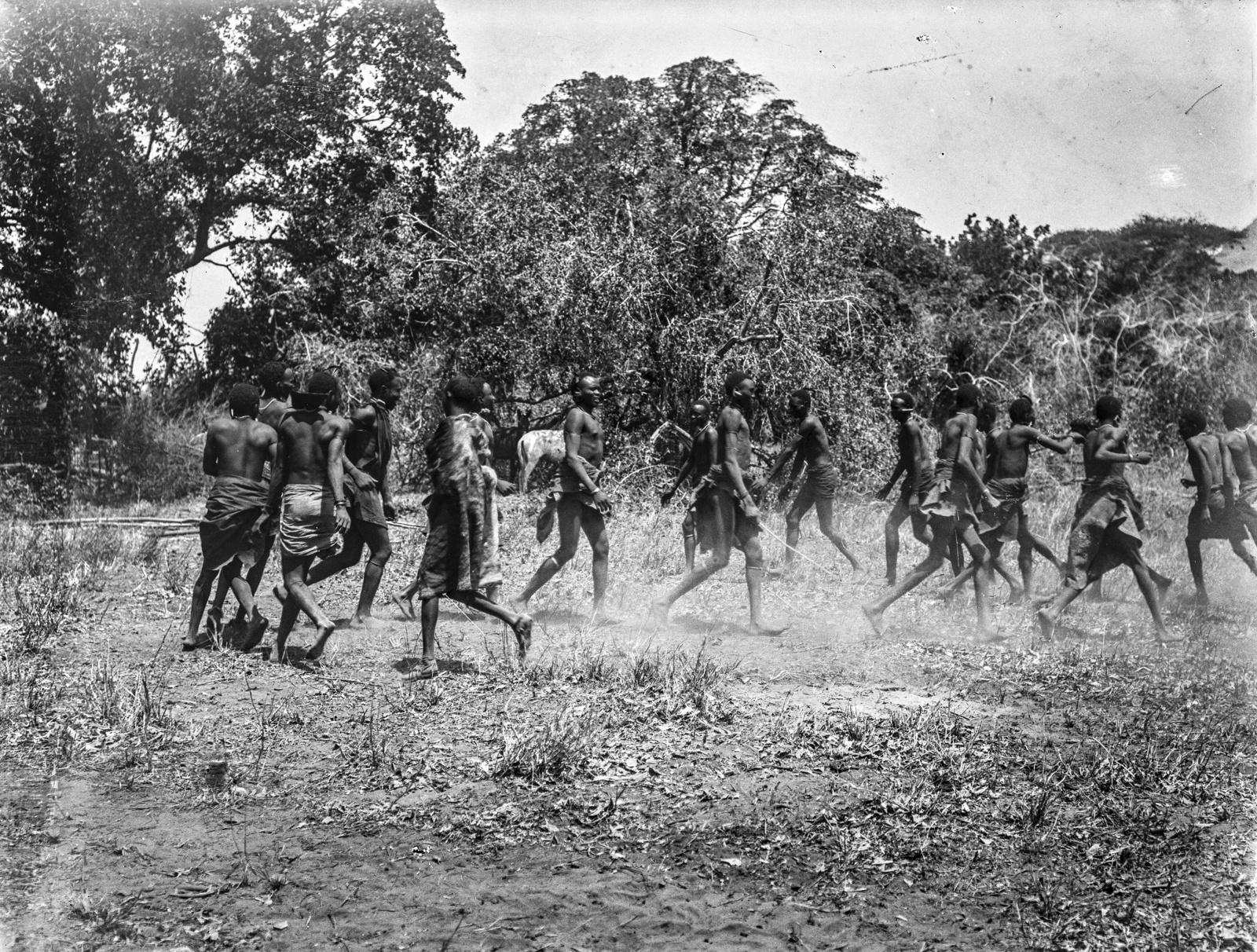 09. Группа людей басонжо во время танца у лагеря Ндалалани. Танцоры прыгают на два фута высотой, вытянув тела