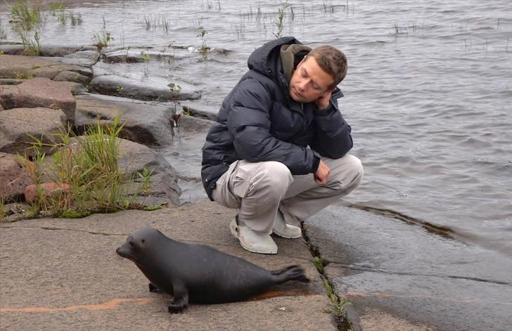 истории история детеныши детеныш озеро человек животные рыбак