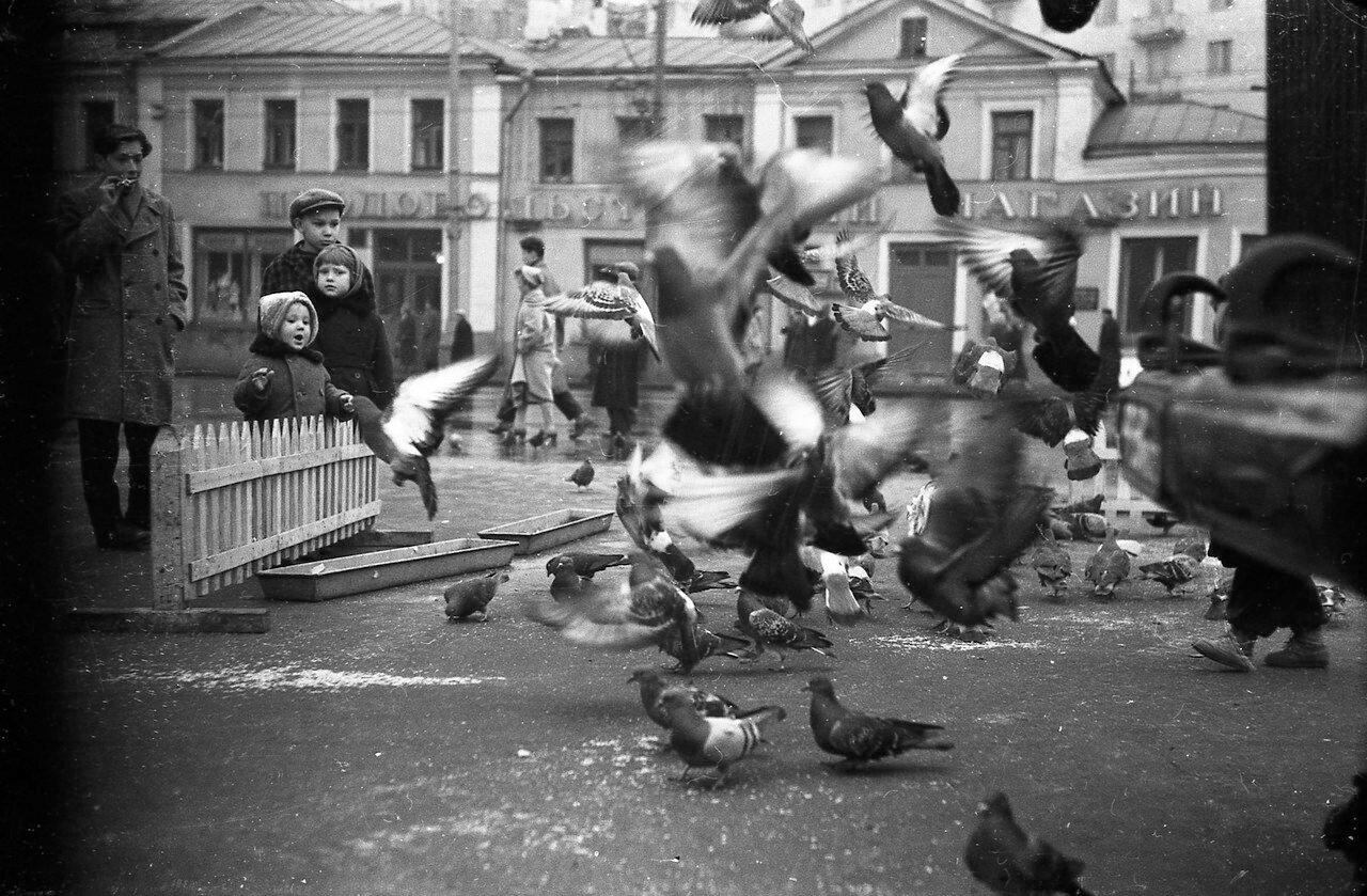 204904 Зубовская площадь Н. Миронов. Кон.50-нач.60-х гг..jpg