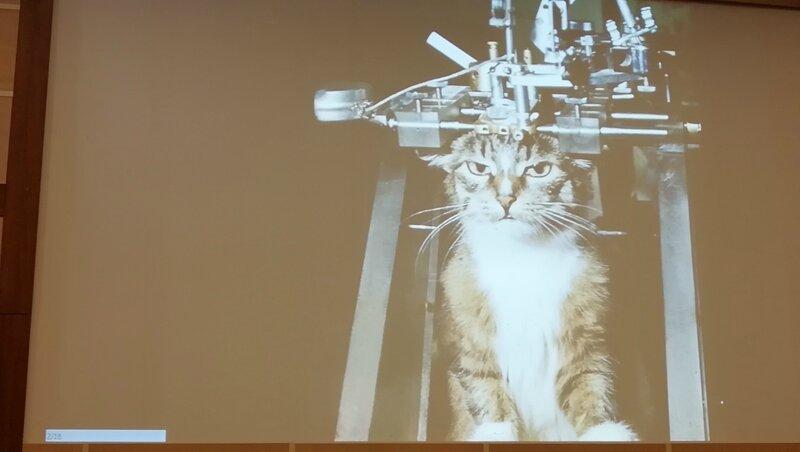 Конференции по сомнологии в МГУ