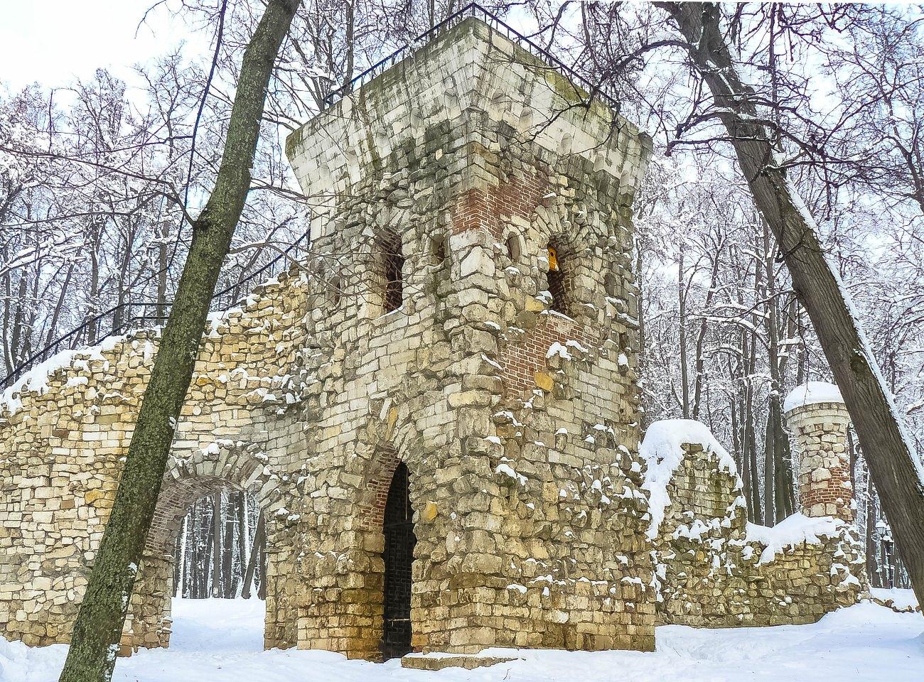 irina-fortuna-tsaritsino-winter 08.jpg