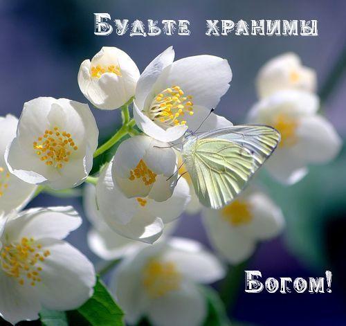 Картинка С первым днем весны! Будьте хранимы Богом
