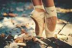Closeup_Ballet_Foliage_464635.jpg