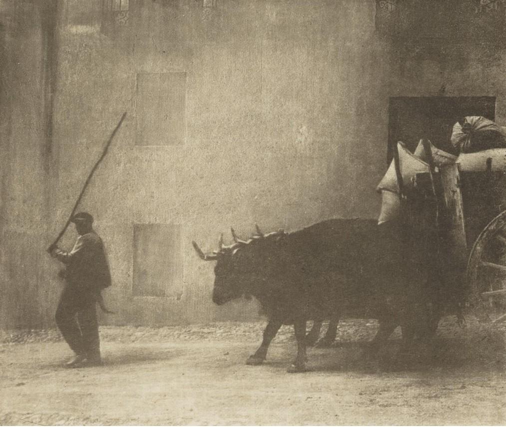 1913. Телега, запряженная волами, Бургос