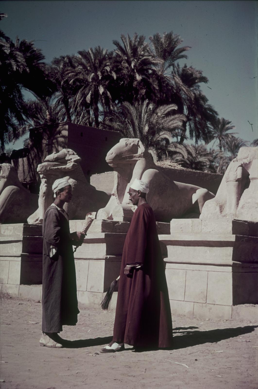 Карнак. Карнакский храм. Два местных жителя возле бараноголовых сфинксов