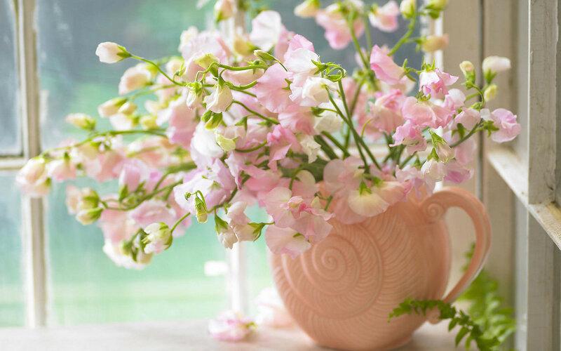 sweet-peas-in-a-vase-443.jpg