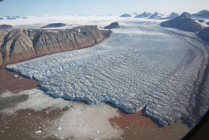 10. Есть на полярном архипелаге Шпицберген и песцы двух видов (обыкновенный и голубой). Попытки пере