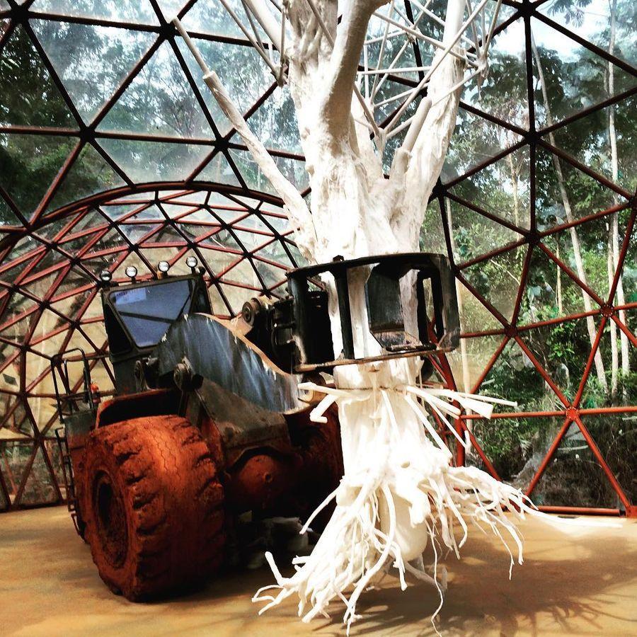 6. Инхотим (Брумадинью, Бразилия) Арт-объекты под кронами первозданных лесов? Почему нет! В бразильс