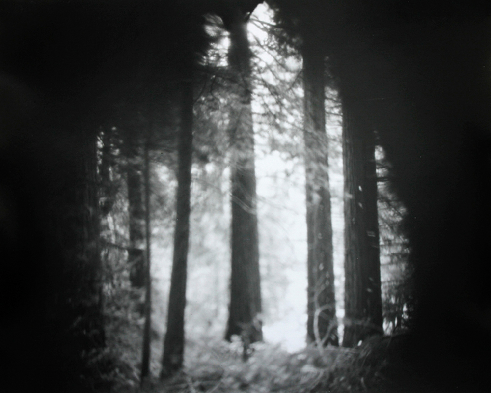 Site-specific pinhole image of Pescadero Creek, image via David Janesko In a meta, Mother Nature-ins