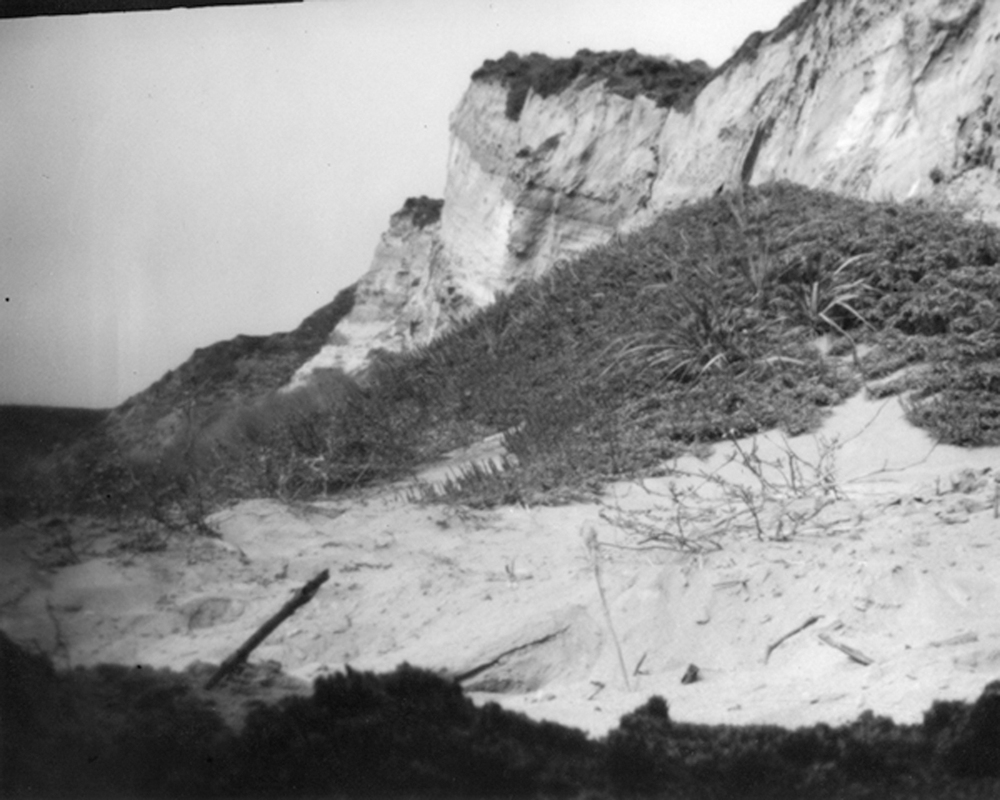 Site-specific pinhole image of Point Reyes Kehoe Beach, image via David Janesko