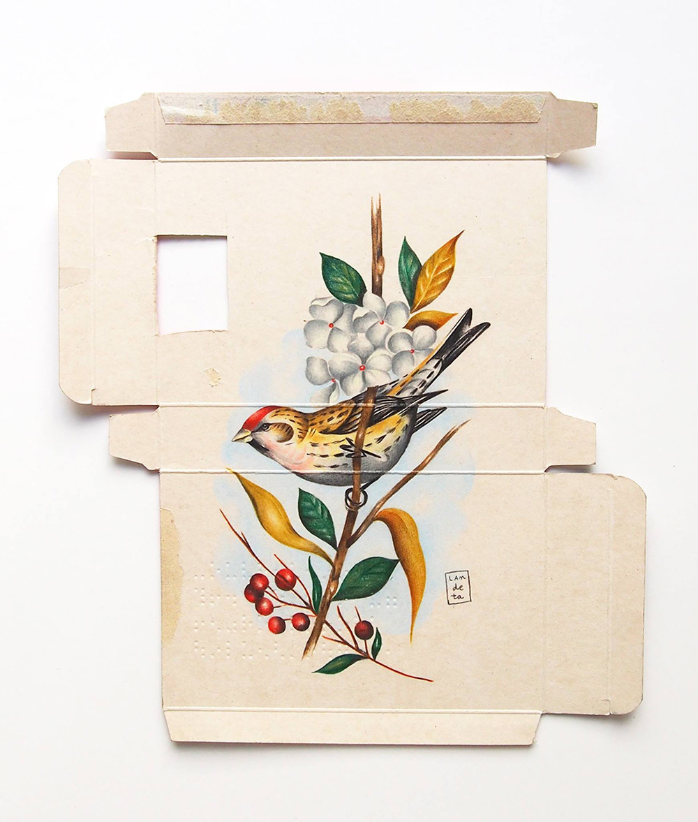 New Birds Painted on Pharmaceutical Packaging by Sara Landeta