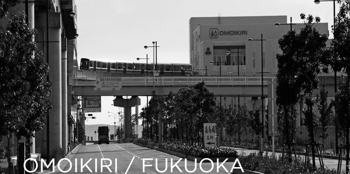 Мойки и смесители Omoikiri сделано в Японии - купить сантехнику в Краснодаре