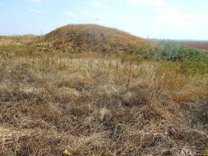 Курган, трава сухая ... DSCN8826.JPG