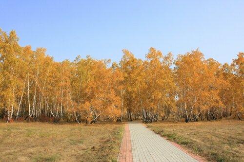 Снова осень золотая...