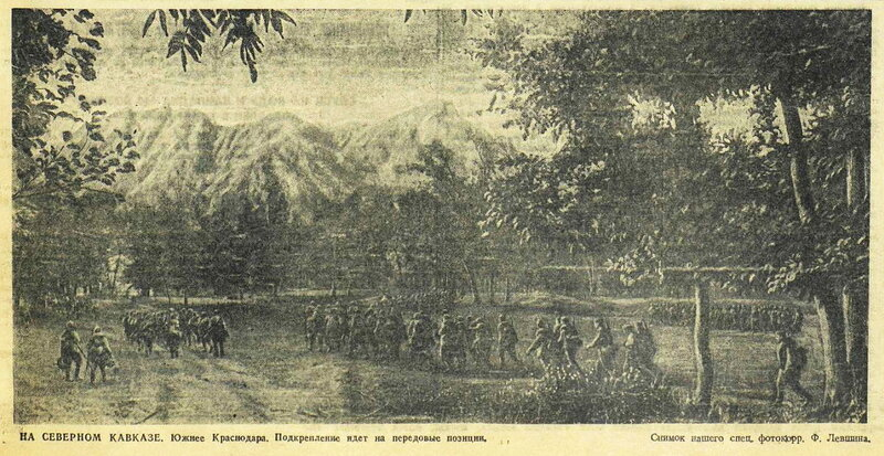 битва за Кавказ, «Красная звезда», 4 сентября 1942 года