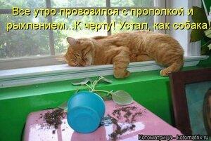 https://img-fotki.yandex.ru/get/103213/194408087.13/0_1373ac_6d88cb27_M.jpg