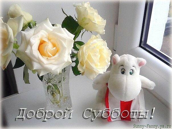 https://img-fotki.yandex.ru/get/103213/27156178.284/0_1af123_1e8f21b7_XL.jpg