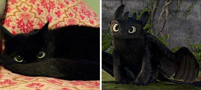 Беззубик, «Как приручить дракона».